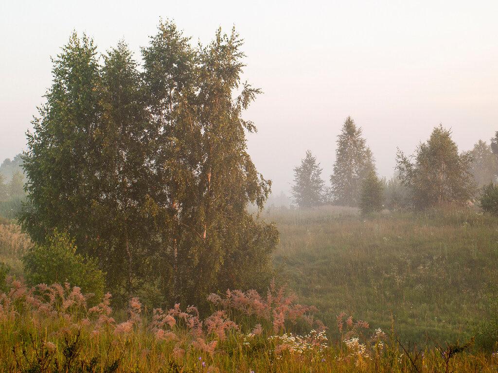 Утро в Хотылёво