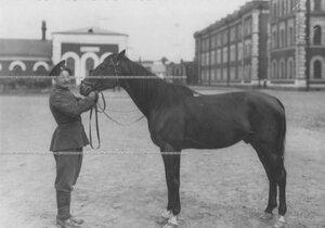 Казак с конем во дворе казармы.
