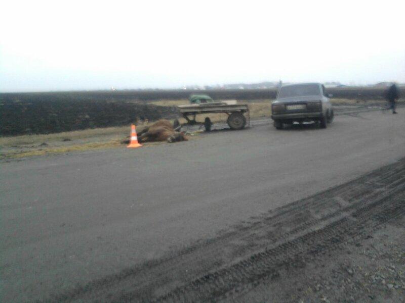 В  дорожных  авариях  погибли  3  человека,  14  ранены 2