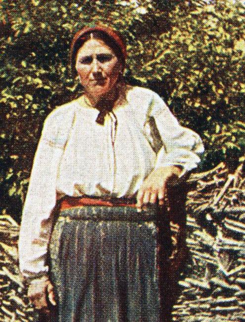 Малороссиянка у плетня2.jpg
