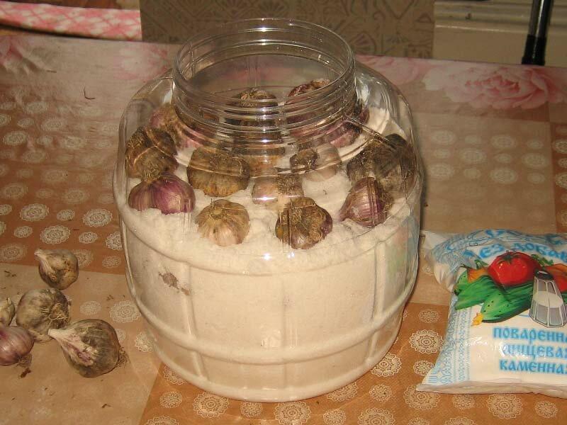 Как хранить чеснок в домашних условиях в квартире