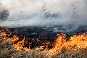 В Молдове введен пятый класс пожароопасности