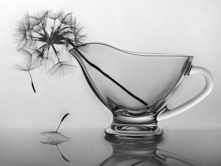 Художественное фото Ирины Фурашовой