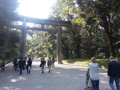 Ворота тори постоянно встречаются в японии, отмечая дороги к храмам