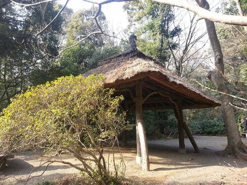 В парках часто можно встретить непонятные, но очень живописные сооружения