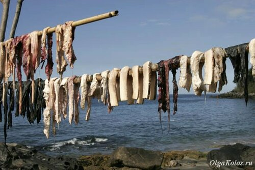 Куски китового мяса