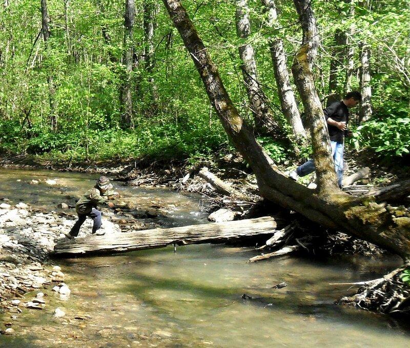 Бревно через реку ... SAM_7701 - 1.JPG
