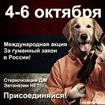 avatar русский.jpg