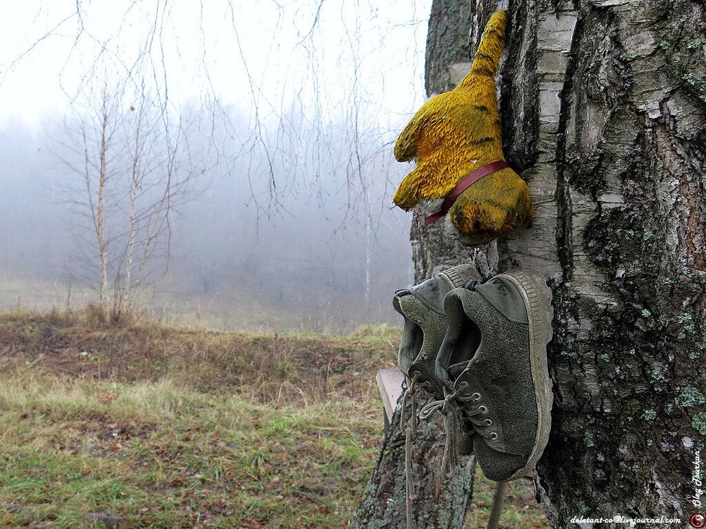 http://img-fotki.yandex.ru/get/9068/126877939.3d/0_c2cf8_846e3ae3_XXL.jpg