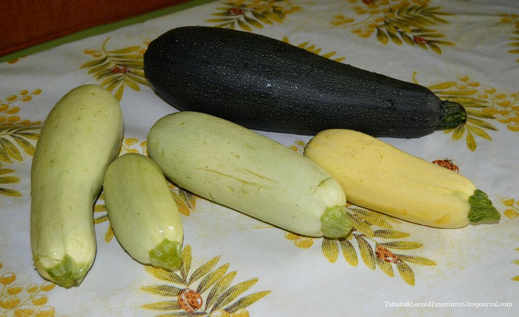 Оладьи из кабачка или драники кабачковые