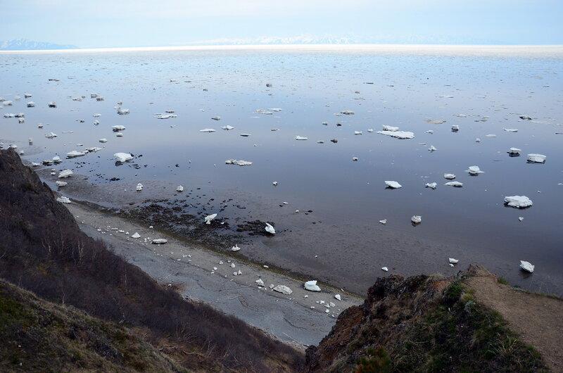 лед на отливе_2.jpg