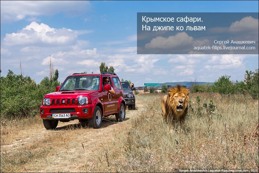 Крымское сафари. На джипе в Тайган