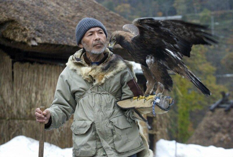 Последний соколиный охотник Японии Хидетоси Матсубара