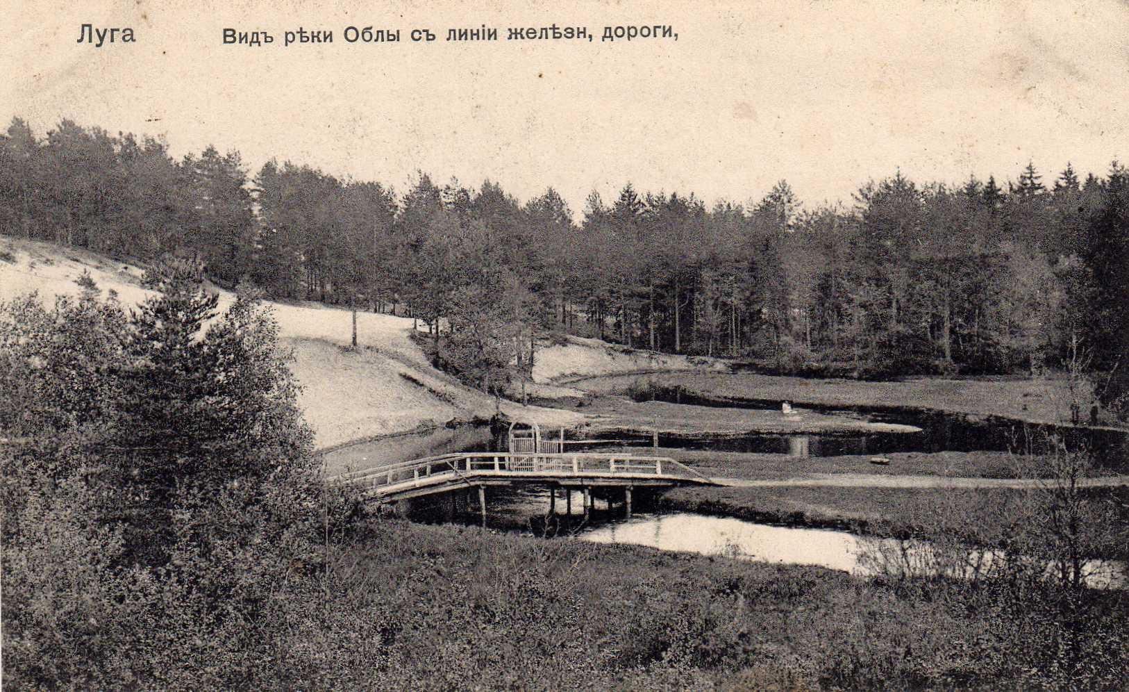 Окрестности Луги. Вид реки Облы с линии железной дороги