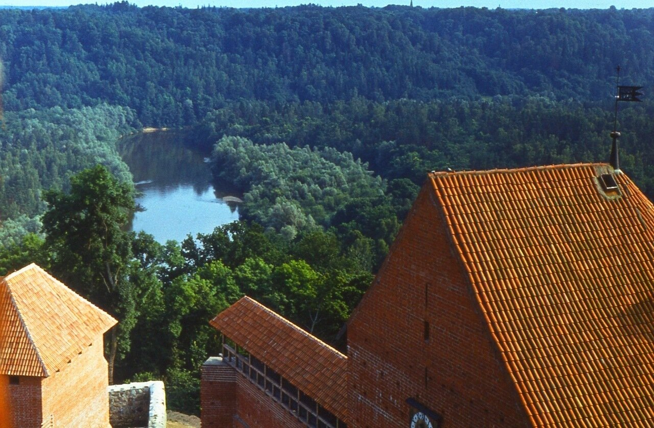 17. Вода, лес, замок