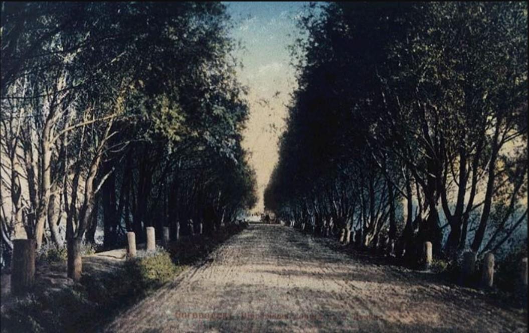 Окрестности Богородска. Шоссейная дорога в с. Корякино