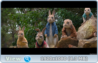 Кролик Питер / Peter Rabbit (2018/BD-Remux/BDRip/HDRip)