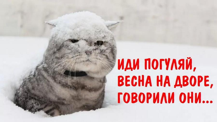 Подборка интересных и веселых картинок 02.03.18