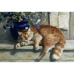 small-cat-joy (2).jpg