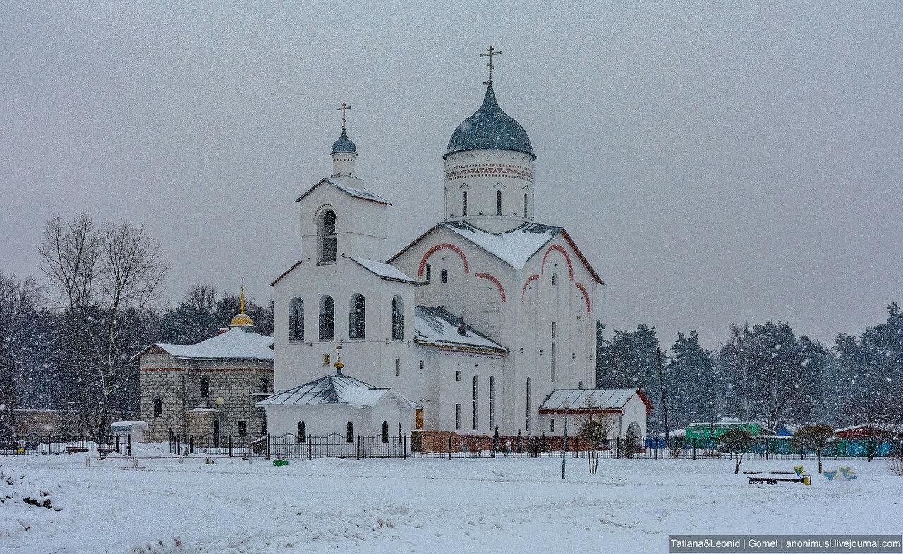 Зима в Новобелице. Гомель