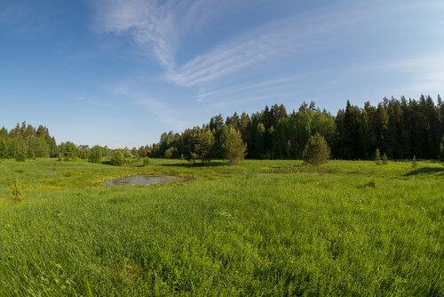 Луга на р. Малая Просница Автор фото: Владимир Брюхов