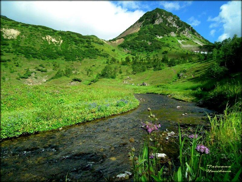 Альпийские луга, предгорье старого вулкана Вачкажец. Раздолье для евражек.