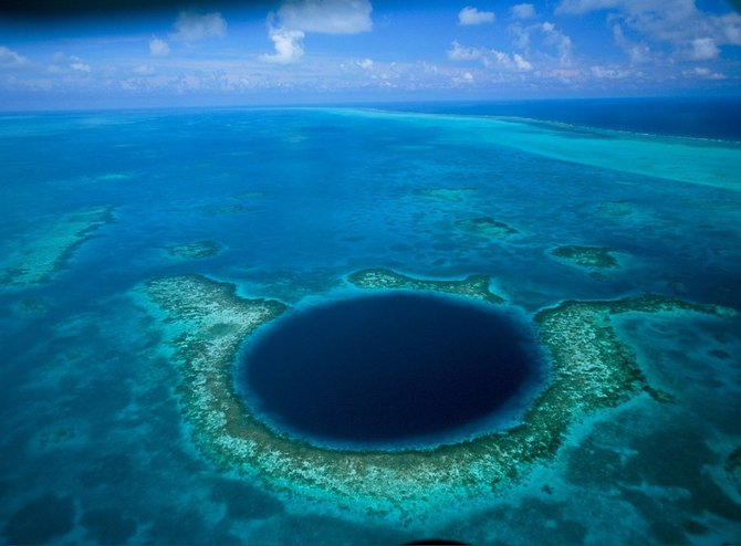 После просмотра этих фото Вам точно расхочется плавать в океане и в море