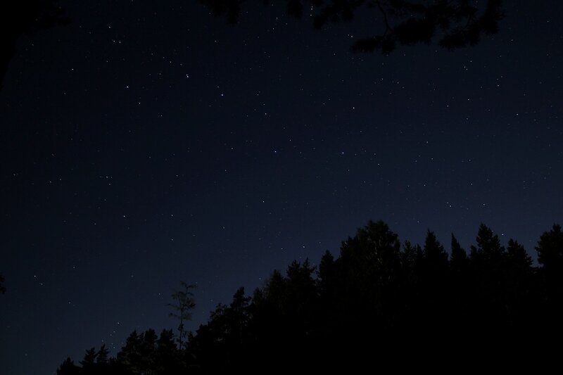 Созвездие ковша Большой Медведицы над прибрежным лесом реки Снигирёвки августовской ночью img_7566