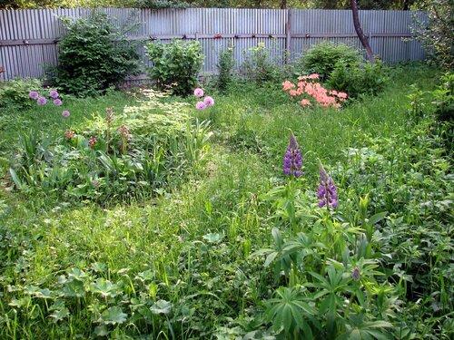Цветущий русский сад