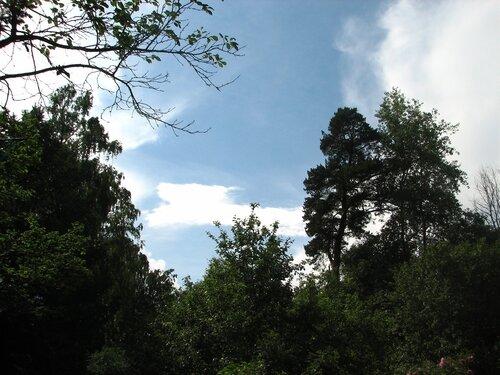 Июньское небо после грозы