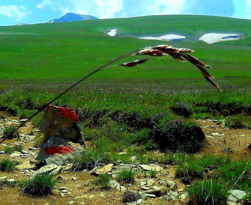 На плато Лагонаки