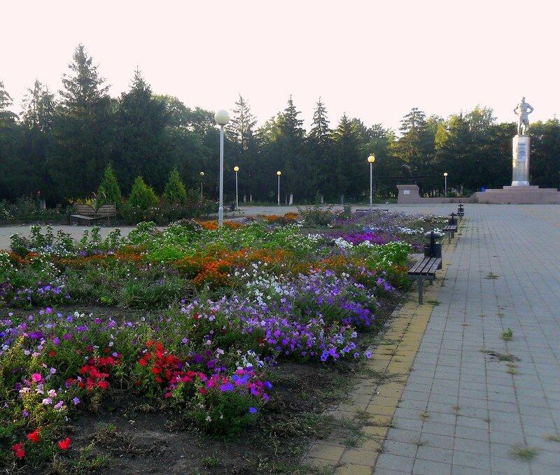 Цветы, в парке ... SAM_8770.JPG