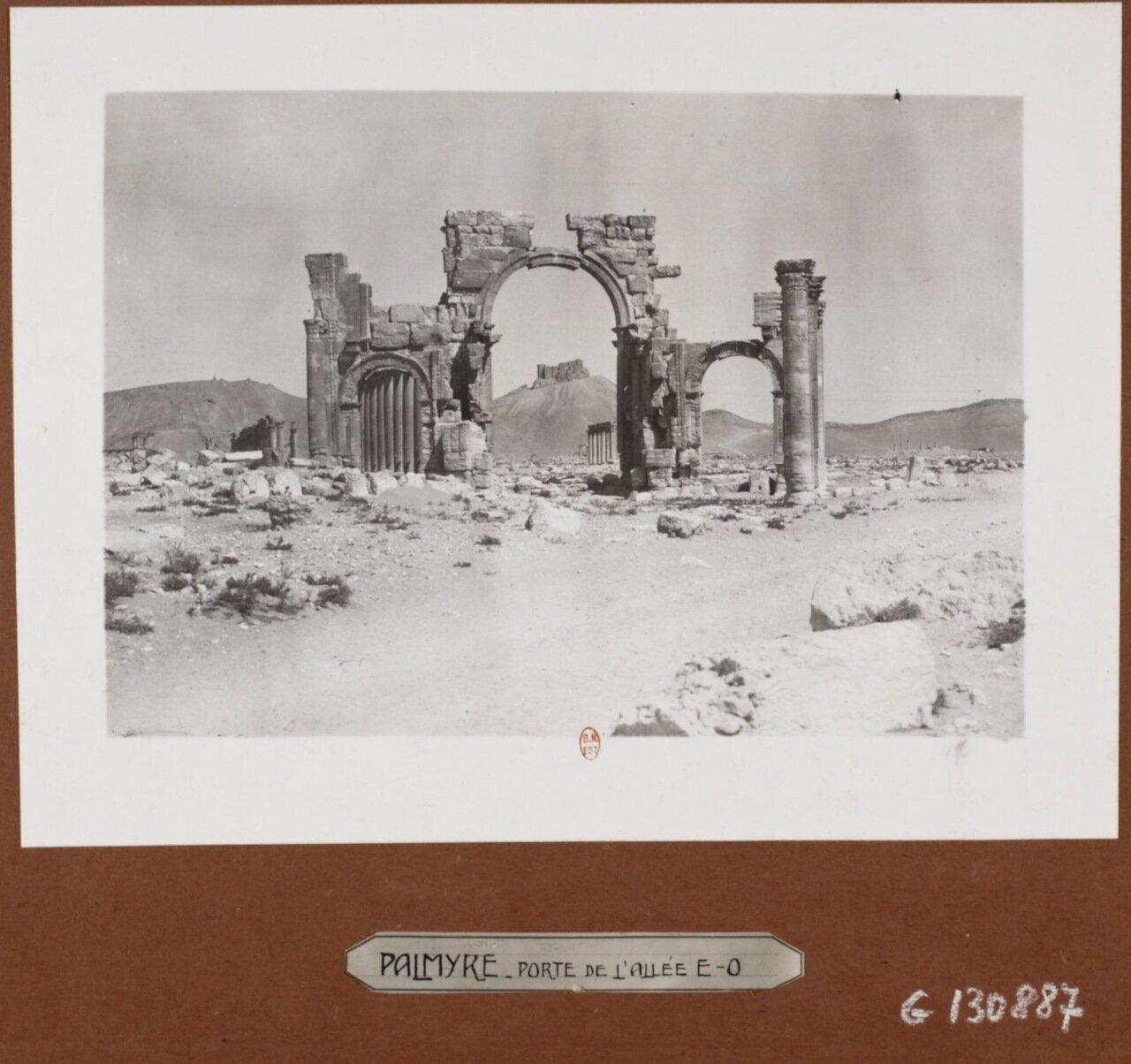 Пальмира. Руины арки