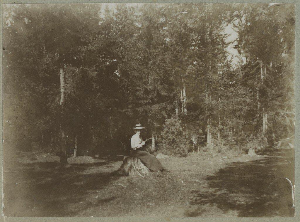 1900. Девушка на пне