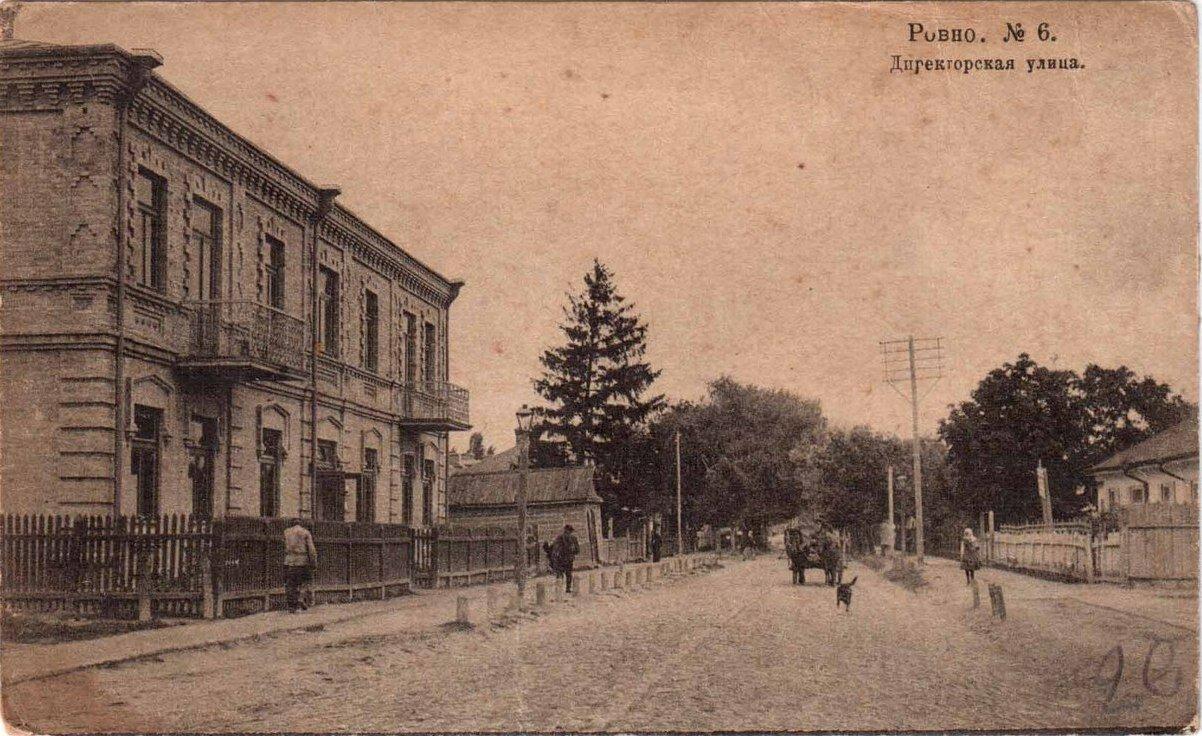 Директорская улица