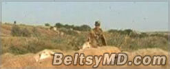Из солдат армии Молдовы – делают хороших пастухов