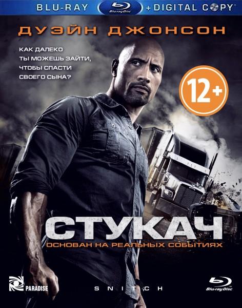 Стукач / Snitch (2013) BD-Remux + BDRip 1080p/720p + HDRip + AVC