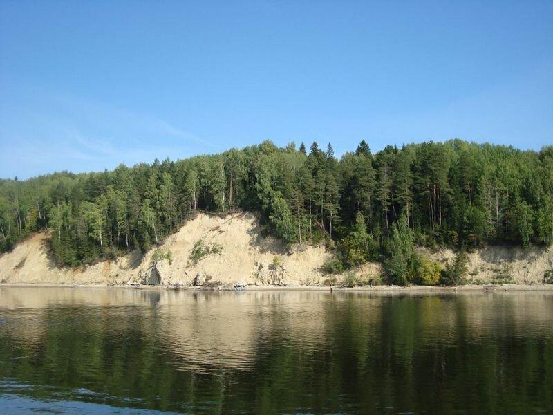 Вдоль берега растёт густой сосновый лес (24.05.2013)