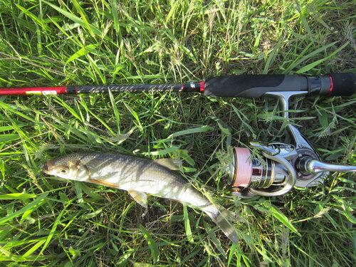 отчет о рыбалке в ростовской области