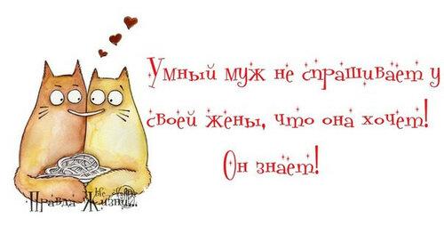 140798922_4809770_umyjik60.jpg