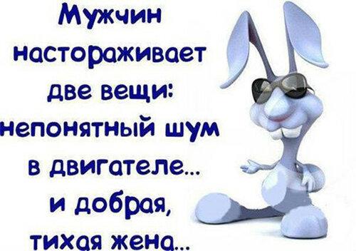 140798927_4809770_umyjik6.jpg