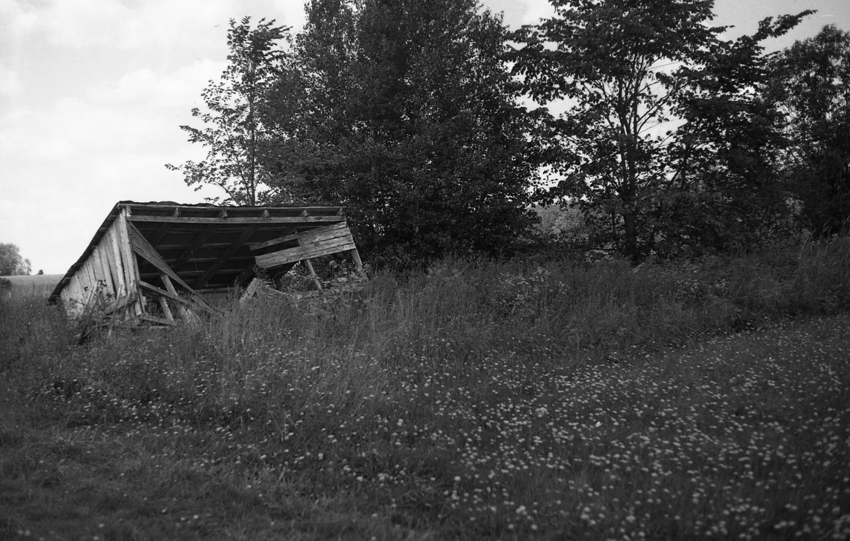 Delicate Black & White Photographs of Quebec Countryside