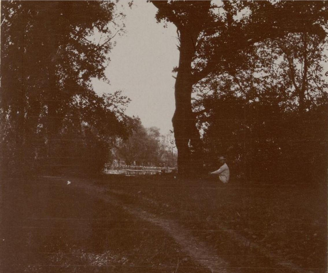 07. В парке