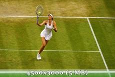 http://img-fotki.yandex.ru/get/9090/14186792.3a/0_d9785_ed840ca0_orig.jpg