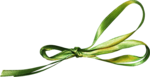 Holliewood_Topiary_Ribbon4.png