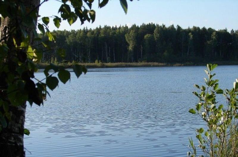Чистая голубая вода (10.07.2013)