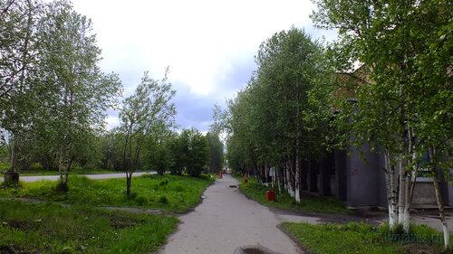 Фотография Инты №4584  Аллея с южной стороны Куратова 38 18.06.2013_13:35