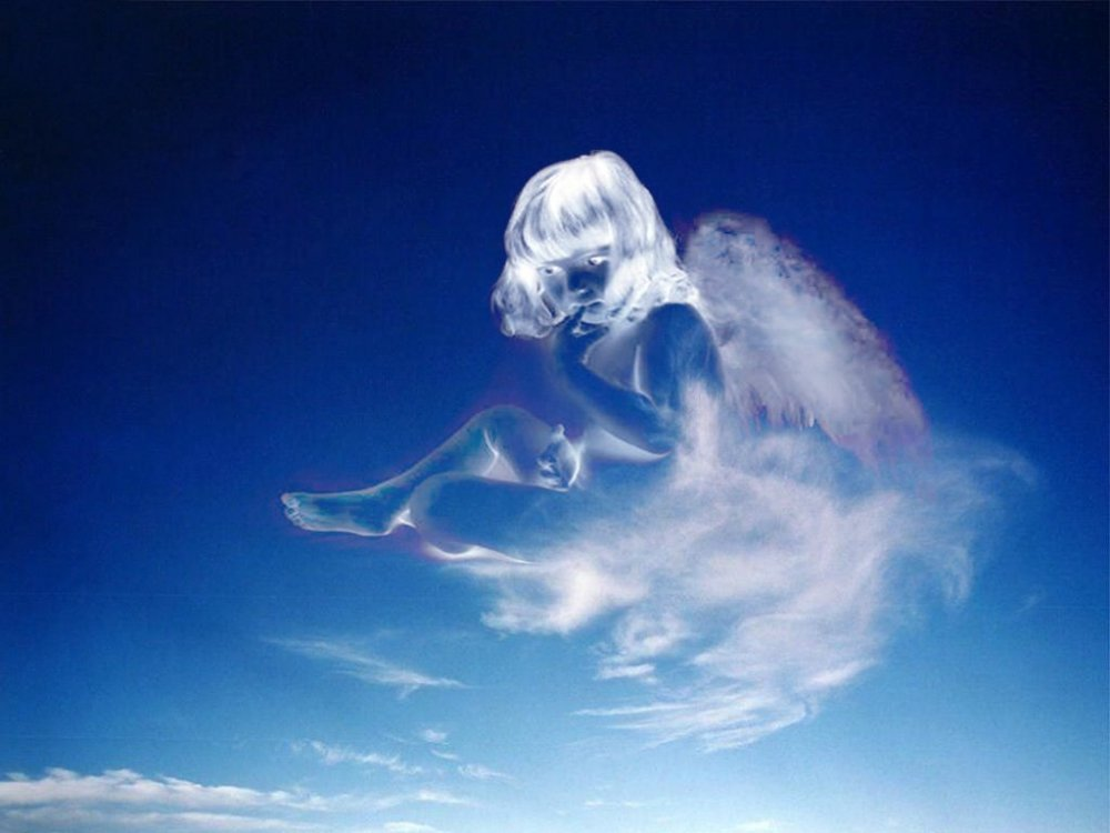 картинки ангел души смерти обвинили молодого