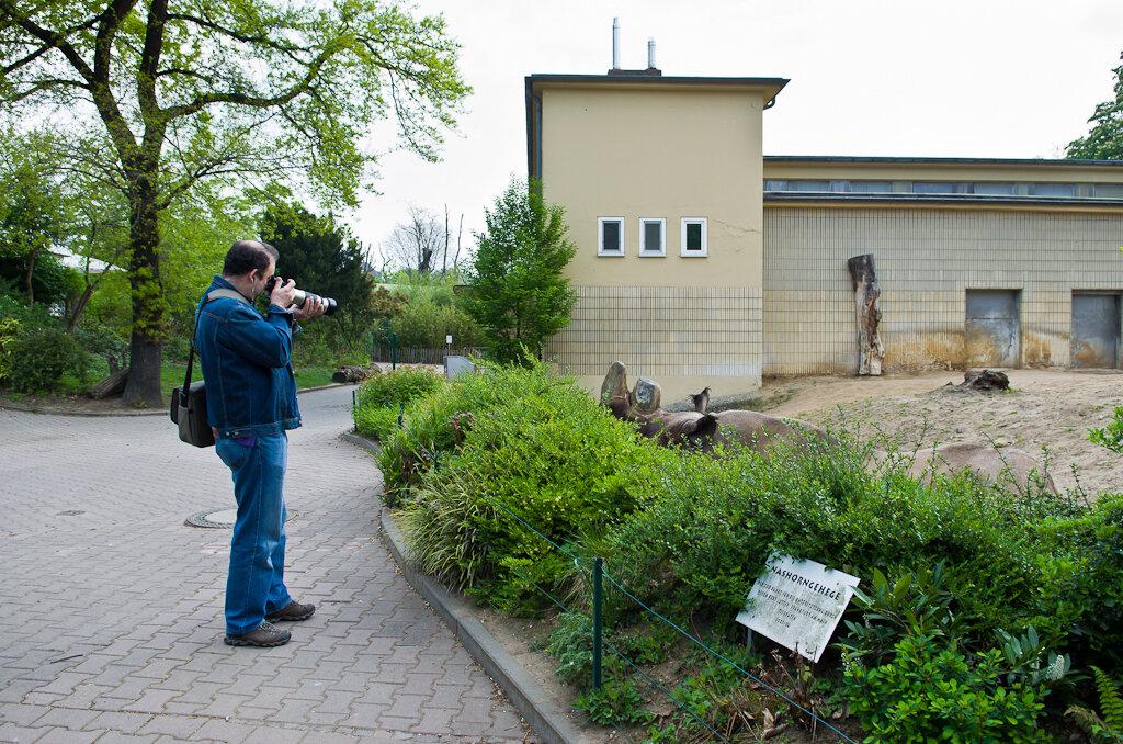 Этот парень, похоже, увлекается съемкой ресничек у носорогов. Фотоохота в зоопарке.