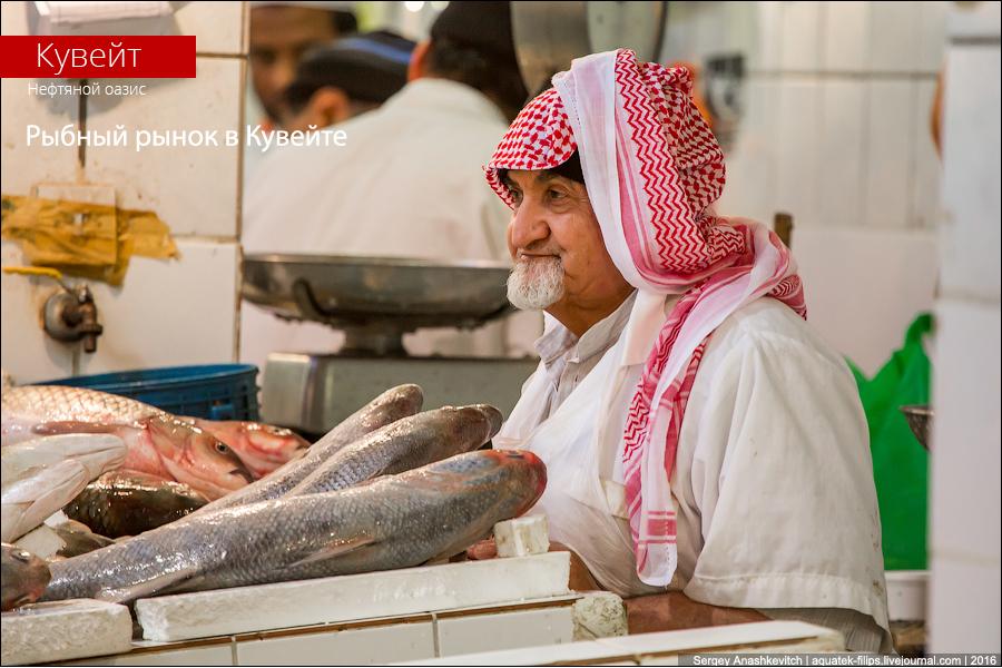 Рыбный рынок в Кувейте